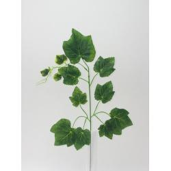 List vinič, malý, 55 cm