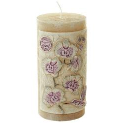 Sviečka dekoračná, valec, Orchida cappuccino, 250 g, 7 x 14 cm
