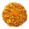 Cibuľka sadzačka, Všetana, 8-16 mm, 500 g