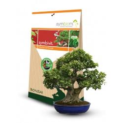 Symbivit, bonsaje, 150 g