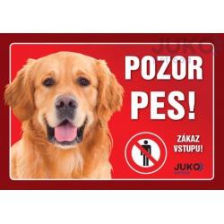 Cedulka Pozor pes! - Retriever, 21 x 14 cm