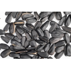 Slnečnica čierna - vážená, 1 kg