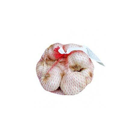 Cesnak jesenný, Mojmír, biely nepaličiak, 500 g