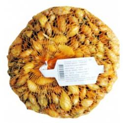 Cibuľa sadzačka, Shakespeare, 8-21 mm, 500 g