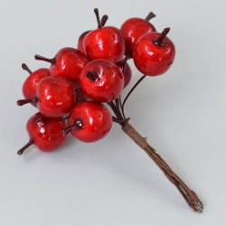 Zväzok jablíčka, 12 ks