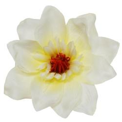 Vencovka magnolia, smotanová, 13,5 cm