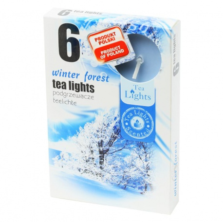 Vonné čajové sviečky, zimný les, 6 ks