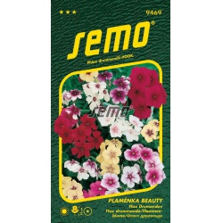 Plamienka (Flox) Beauty, zmes, 9469, S3, 0,3 g