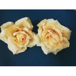 Vencovka ruža, mix farieb, 11 cm