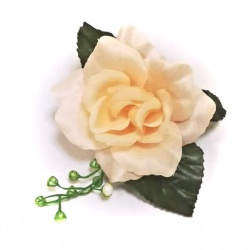 Vencovka ruža s listami a bobulami, 17 cm