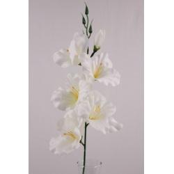 Gladiola solo, biela, 53 cm