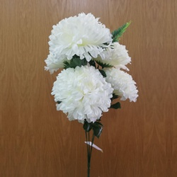 Kytica chryzantéma, x5