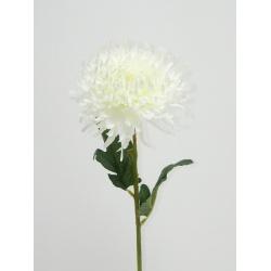 Chryzantéma, 52 cm