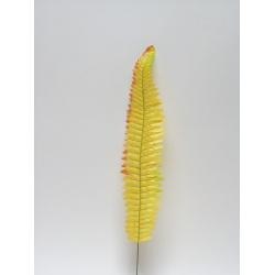 List papraď, mix farieb, 55 cm
