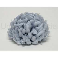 Vencovka chryzantéma, mix farieb, 13 cm