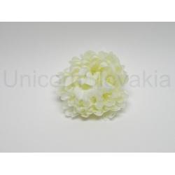 Vencovka chryzantéma, mix farieb, 7 cm