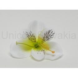 Vencovka alstromeria, mix farieb, 9 cm