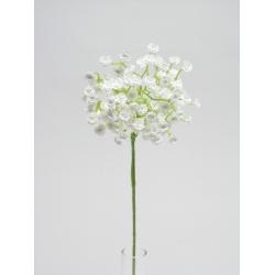 Gypsofília Solo, biela, 50 cm