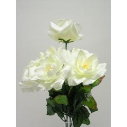 Kytica ruža lekno x7