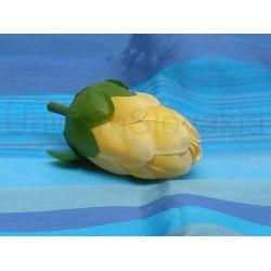 Vencovka protea, mix farieb, 6,5 cm
