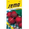 Reďkovka červená, TERCIA, S2, 3421, 5 g