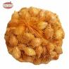 Cibuľka sadzačka, Sturon 21-23 mm, podlhovastá, 500 g