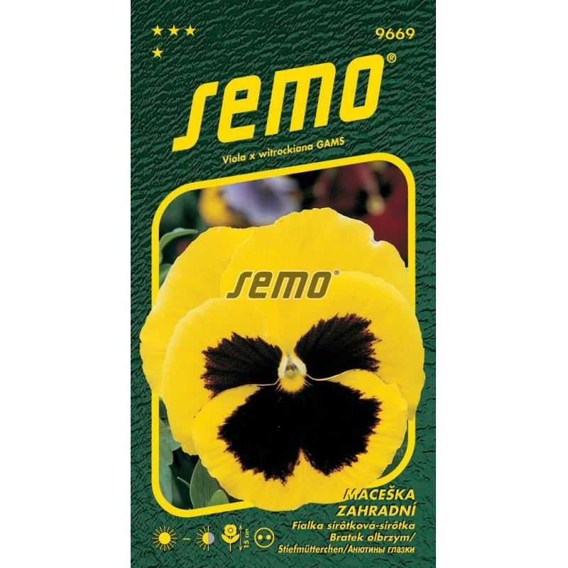 Sirôtka veľkokvetá, žltá, S4, 9669, 0,3 g