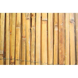 Plot Bambus, štiepaný, 1 m, L-5 m