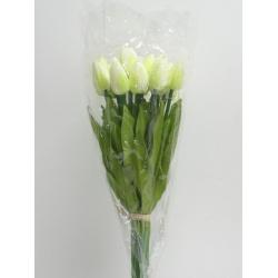 Tulipán sólo, 41 cm