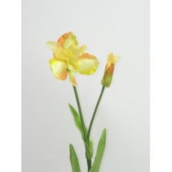 Trs iris, mix farieb, 57 cm