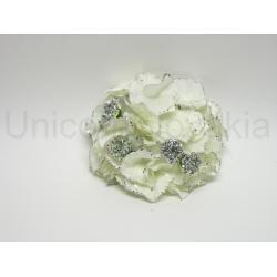 Vencovka hortenzia, vianočná, 20 cm