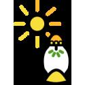 Solárne kahance